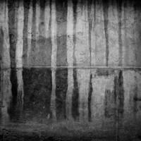 wall 23 by siamesesam