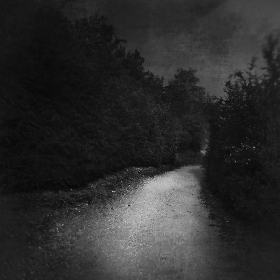 Le Chemin de ronde by siamesesam