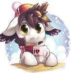 Winter Audy