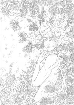 Kraneia sketch