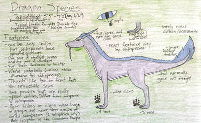 Dragon Species (Generic)