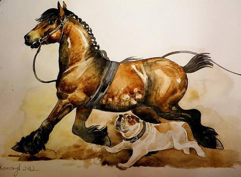 draft horses's fear