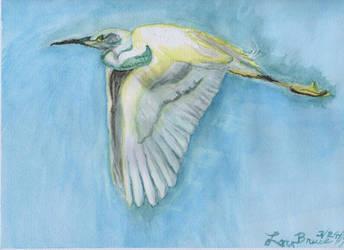 Snow Egret - LuthiAir by LuthiAir