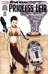 Princess Leia and R2-D2 by shinlyle