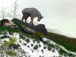 Mountain goat by RandyAinsworth