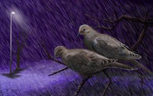 Purple Rain by RandyAinsworth
