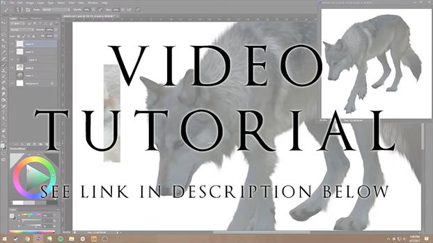 Wolf Manip Video Tutorial