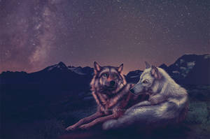 starstruck by Kydnt