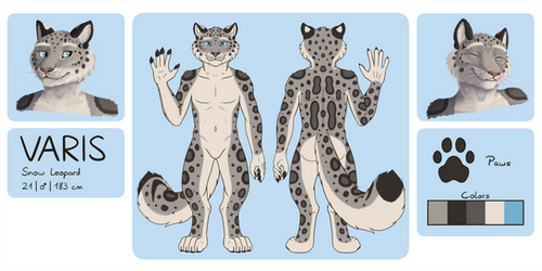 Varis Reference Sheet by Fehlung