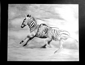 Zebras by n3t0x