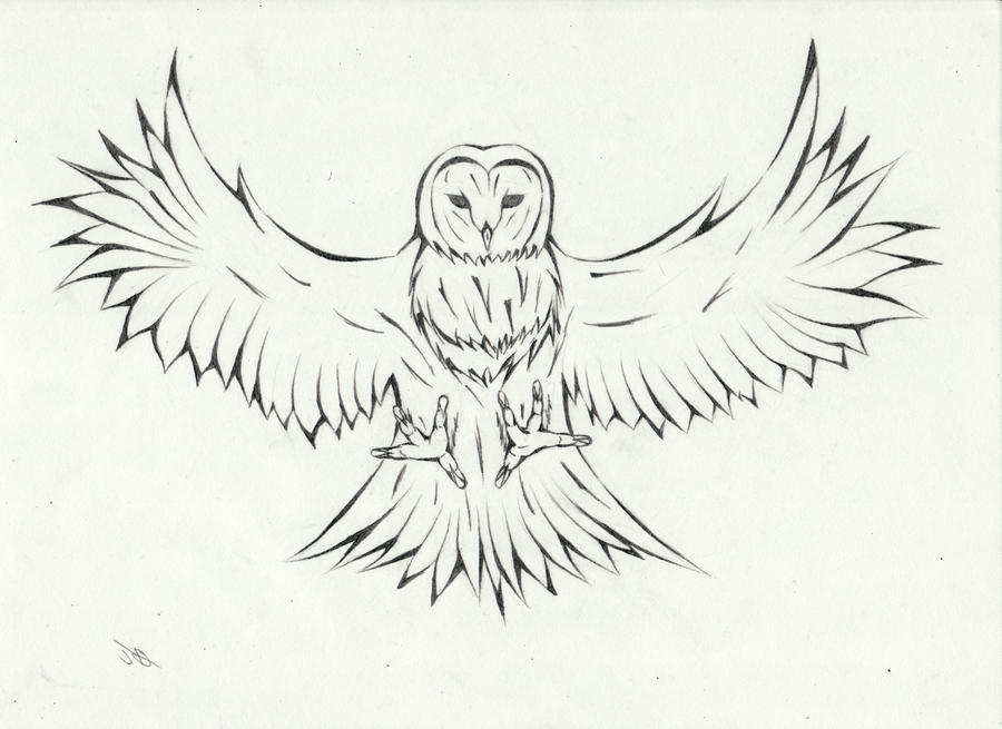 Attacking Owl by joshbalaski on DeviantArt