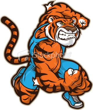 Buff Tiger Muscular tiger