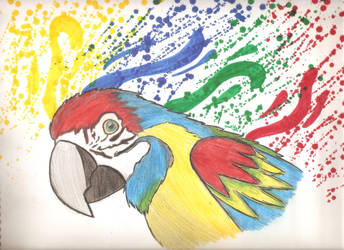 Dibujo de papagayo terminado. by IloveWKever