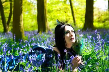 Bluebells by WinterDruidess