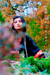 Autumn II by WinterDruidess