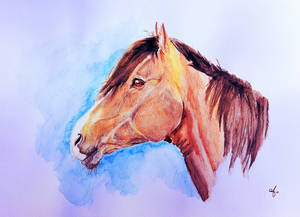 Watercolor portrait of a horse