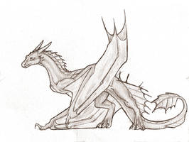 Wyvern Sketch (traditional)