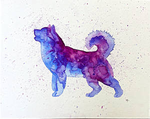 Cold lights  - watercolor Alaskan Malamute