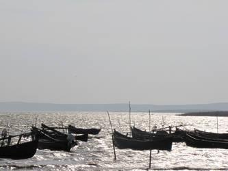 Boats by distandi