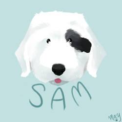Mr. Sam I Am