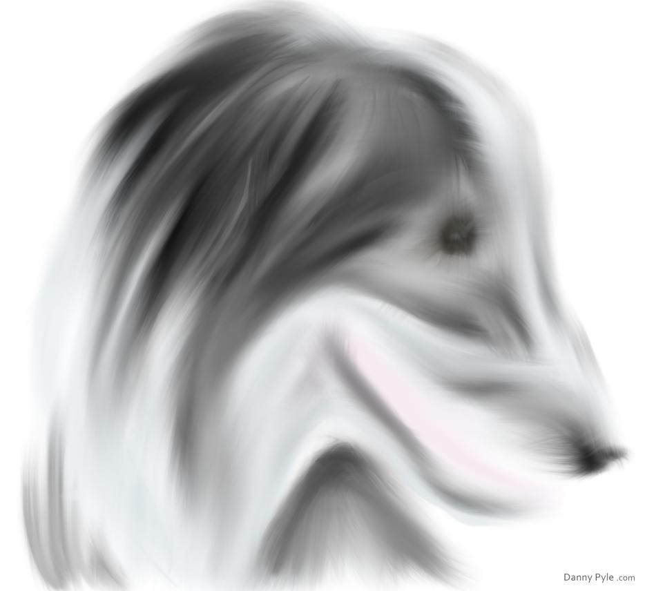 Misty Spirit by dannypyle