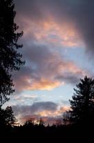 Guerneville Sky by Stillwarm