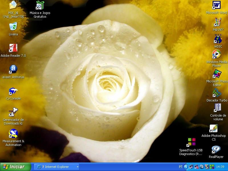 Rose by TatiStrange