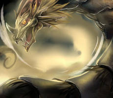random dragon by Murasaki-Hoshi