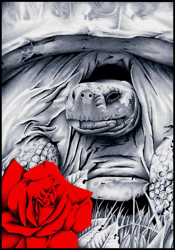 Testudo Gigantea by devouredex