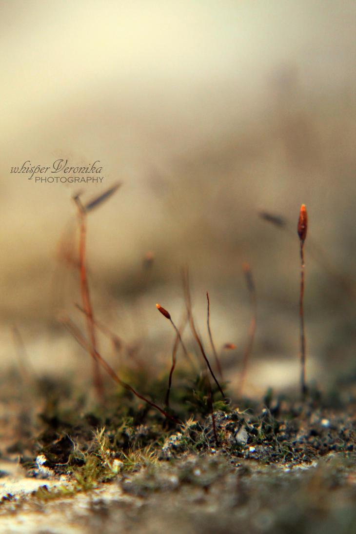 Listless VI by whisperVeronika