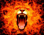 Lioness fire