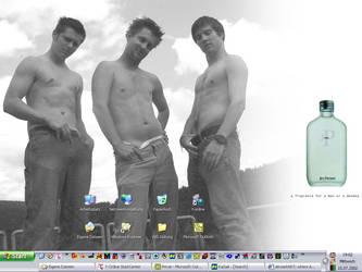 summertimedesktop by -thrawn-