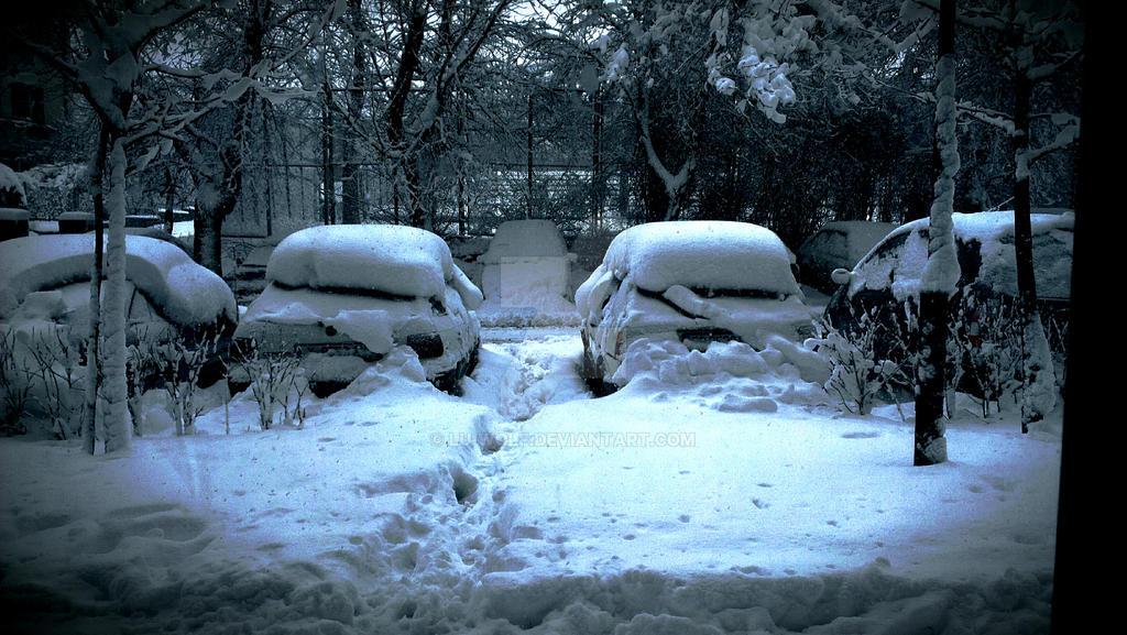 snow by lu-wolf