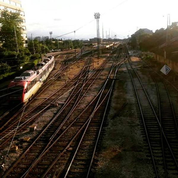 train by lu-wolf