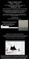 Understanding Levels by ritwikr