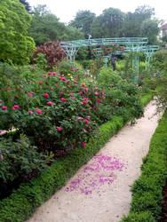 Garden path by melusineblack
