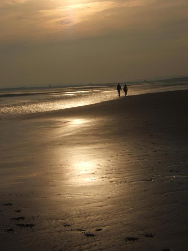 The Light Shore