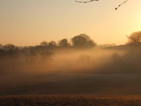 Morning Mist, unploughed field