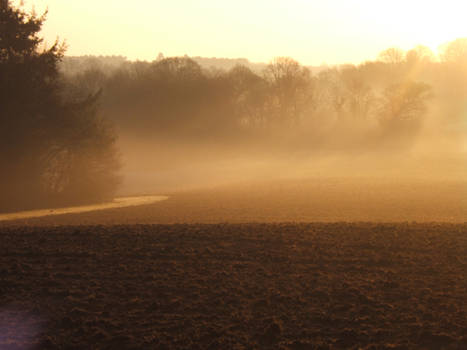Morning Mist, ploughed field