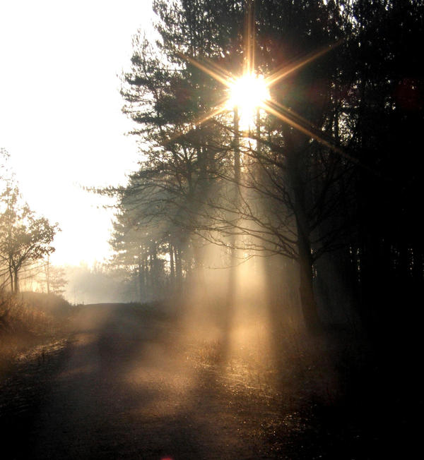 Double Ray through Mist