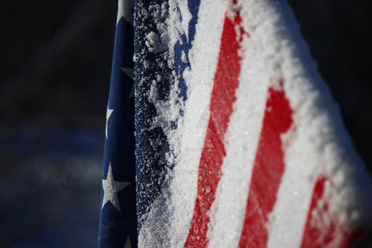 America Covered in Snow