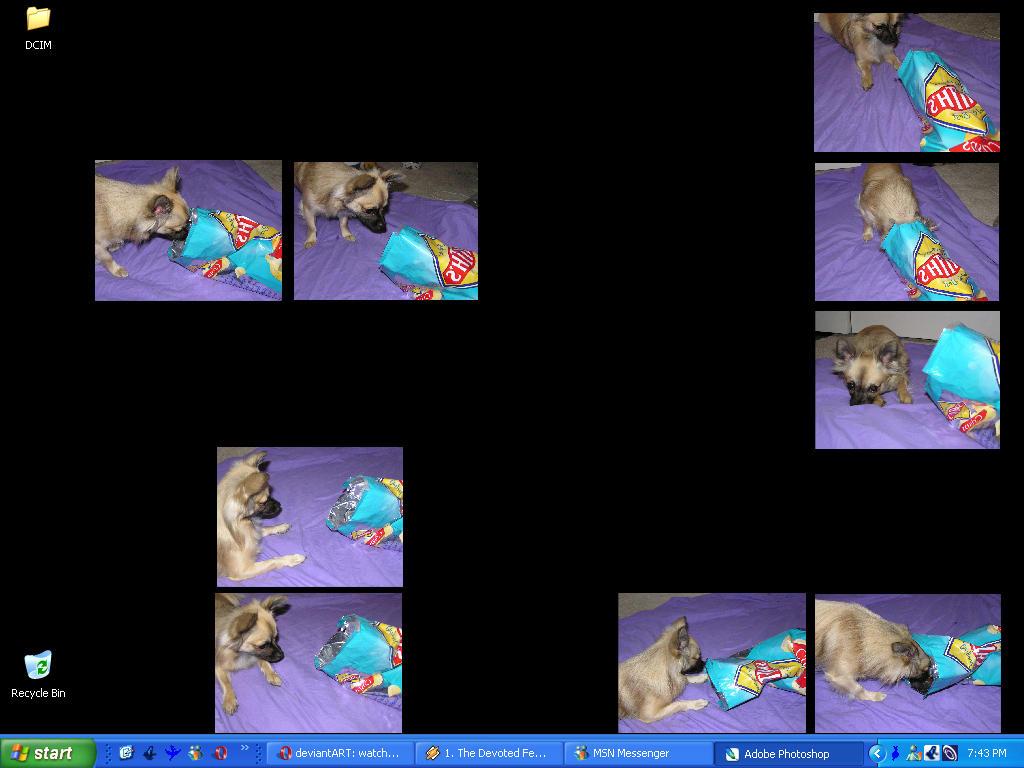 current desktop thingy