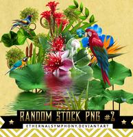 RandomStock PNG Pack #2 by EthernalSymphony