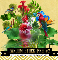 RandomStock PNG Pack #2