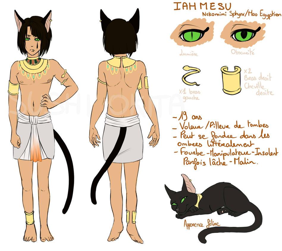 Iahmesu reference sheet by SushiOkita