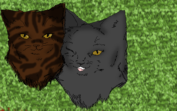 yellowfang and raggedstar coloured rough sketch by
