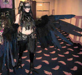 Raven Harpy