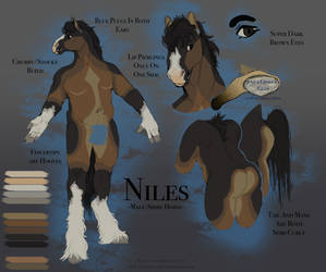 Niles - Character Design and Ref Commission by Slugg-o