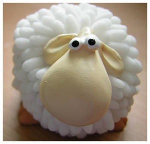 Mr. Sheep
