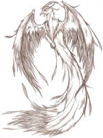 Phoenix - pencil Sketch by MaverickTears